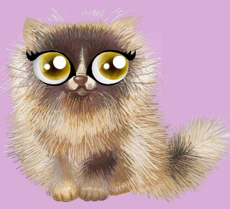 Take in a shiny persian breed cat